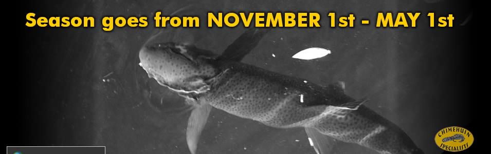 fly fishing season in Patagonia Argentina goes from November 1st till May 1st